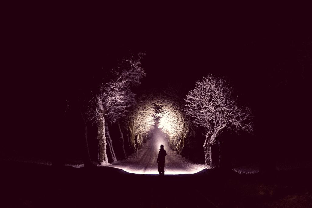 man walking in woods in winter